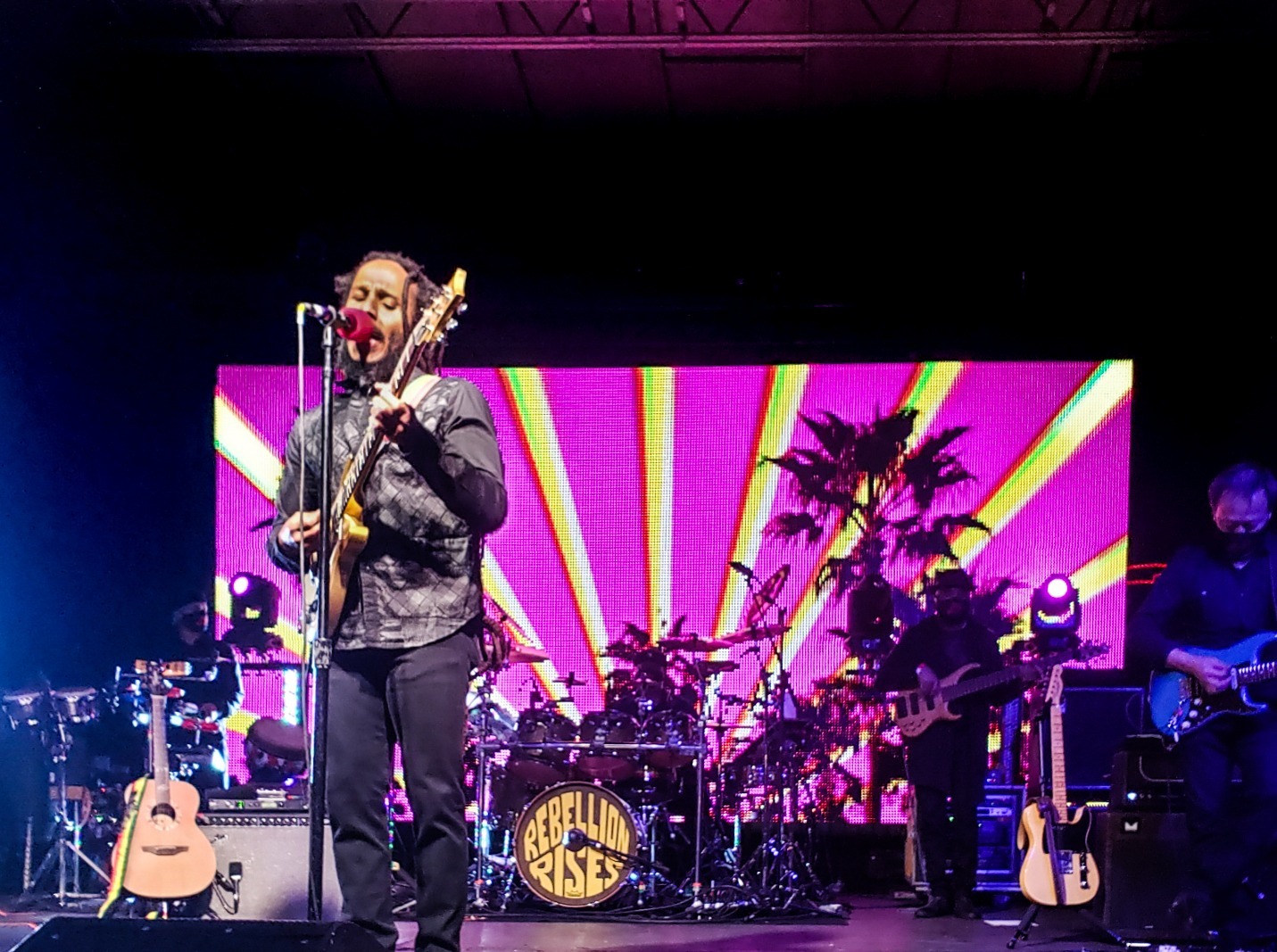 Ziggy Marley at Drive-In OC