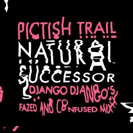 NEWS: Pictish Trail's recent single Natural Successor is Remixed by Django Django